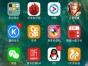 苹果6sp,128g全网4g