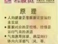 台湾碧波庭H34D内在负压养生仪