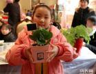 旭致传播,地产暖场,多肉植物盆栽DIY