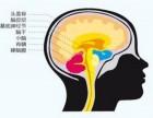 较强大脑全脑开发加盟开店需要什么条件