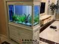专业鱼缸定做 水族用品 鱼儿一站式购齐 价格合理