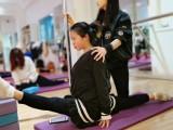 专业形体健身舞蹈培训学校零首付