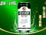 山东啤酒厂家 罐装啤酒