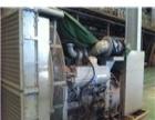高价回收大型发电机,电厂发电机回收