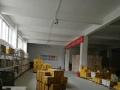 郑东新区3850平标准厂房办公楼出租 可分割