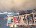 家庭水电改装