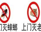 鹤壁市灭鼠 灭老鼠 灭蟑螂,酒店四害防治