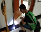 博罗白蚁防治 博罗白蚁防治所 技术精湛 价格优惠
