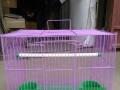 批发狗笼子,鸟笼子,狗笼,网片,围网,护栏,防护网