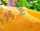 烤地瓜加盟 夏季烤薯加盟 锡纸烤薯加盟