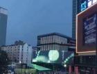 金台周边 大庆路中段 商业街卖场 40平米
