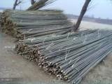 北京竹子哪里賣竹片供應