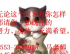 芜湖电脑就业实战培训班(平面设计培训)