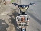 48v高配电动自行车