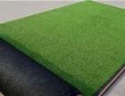 北京哪里有卖塑料草坪厂家