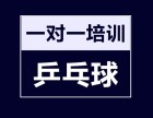 江汉区青年路万松园小学附近儿童乒乓球启蒙培训班,火热报名中