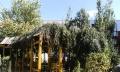 郁金花园 精装修 南北通透 地热房 南明厅 落地窗 降价房