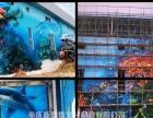 专业墙画工程彩绘涂鸦酒店壁画幼儿园墙绘3D立体画