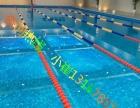 英派斯 专业游泳培训,一对一大班