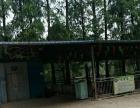 汉寿县烈士公园 土地 10000平米