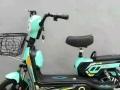 厂家直销全新品牌电动车全北京免费送货上门货到付款送充电器