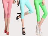 夏季新款糖果色女士7分裤打底裤 薄款女裤子彩色裤高腰短裤现货