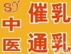 陈村催乳师,容桂催奶师,均安催奶断奶,碧桂园催乳