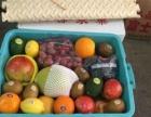 蔬菜水果粮油批发配送酒店 机关 学校 食堂资质齐全