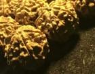 尼泊尔5瓣29黄皮爆肉双龙纹金刚菩提手持18颗