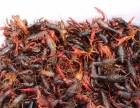 水草移栽是养殖小龙虾关键