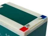 铅酸免维护蓄电 电池电动车 蓄电池厂家