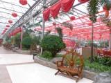 玻璃温室厂家,温室工程承接,玻璃温室种类及优点,