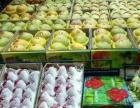 海南最大水果果园直供招收微商代理电商代理