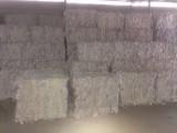 长沙大量回收书纸,报纸,铜版纸,文件纸,各类办公用纸