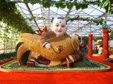 景观雕塑供应商哪家知名_菜博会雕塑