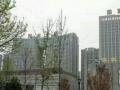 开发区创业大厦 写字楼 100平米