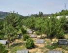 鞍山弘莲绿色环保树葬合法公墓、墓地