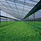 山东结实耐用的智能温室,优质智能温室