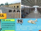 出售自家繁殖纯种喜乐蒂犬 北京同城可送货上门外地客户支持上门