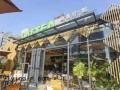 深圳LATTEA绿盖茶馆加盟店怎么样 台湾绿盖茶加盟