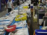 梅罗秀路1505号梅陇批发市场 海鲜摊位转让 一口价5万