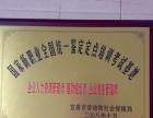 word、excel、ppt办公自动化,包教包会