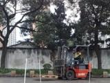 上海青浦区叉车驾驶员培训
