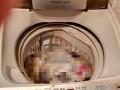 【搞定了!】sanyo三洋全自动洗衣机5.0kg