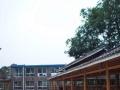 紫藤花农庄---吃喝玩乐住,本月优惠进行中