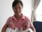 爱心家政长期培训高级母婴护理师,育婴师,护工