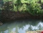 隆化县伊逊河沟林地山区 土地 70000平米