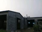 新六中 唐訾路中段 厂房(仓库)1000平米