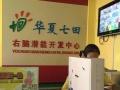 菠萝树5D智慧字母高科技益智产品,小产品大市场
