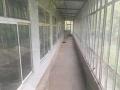 出租吴村镇两栋房屋均带16间房间共3000平米